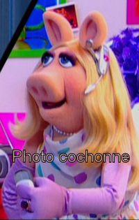 Cochonne
