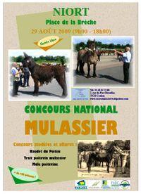 Niort-concours_mulassier