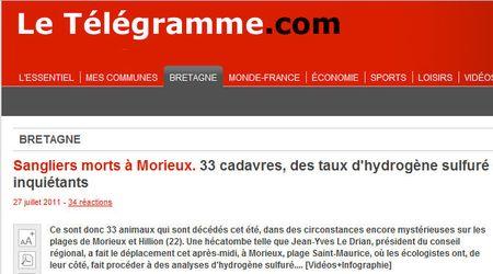 33 sangliers-27 juillet 2011