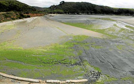 Grève d'algues vertes en Bretagne