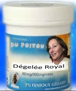 Dégelée Royal