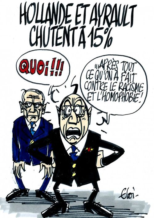 Hollande et Ayrault 15 pourcent(15.11.2013