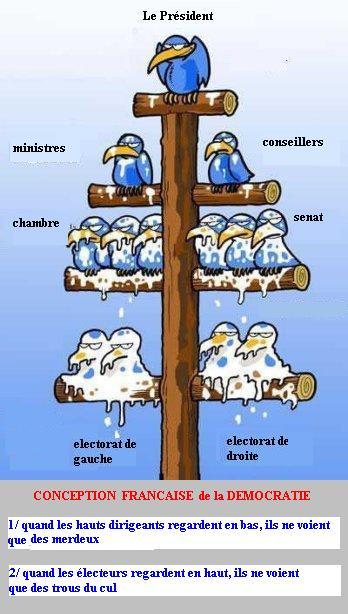 Organisation démocratique française