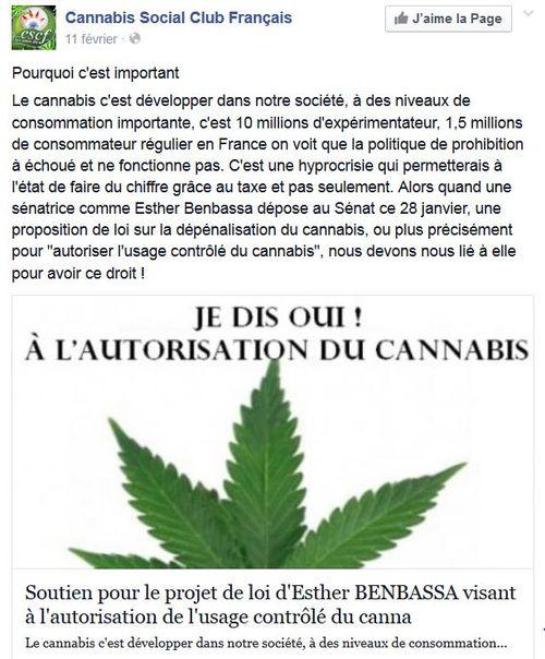 Cannabis Social Club-Esther Benbassa