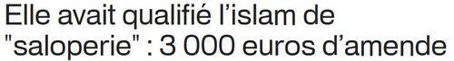Islam-saloperie-amende-3000-euros