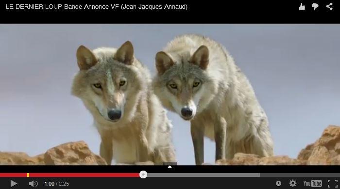 Le dernier loup - JJ Annaud