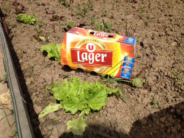 Pack de 10 bières Lager U