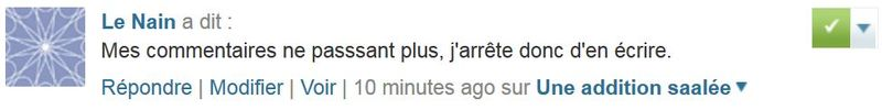 Le Nain - mes commentaires