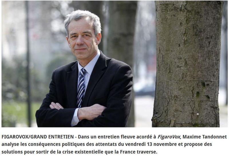 Maxime Tandonnet-FigaroVox-PHOTO-20.11.2015