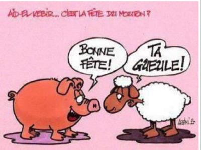 Aïd-el-Kebir-mouton