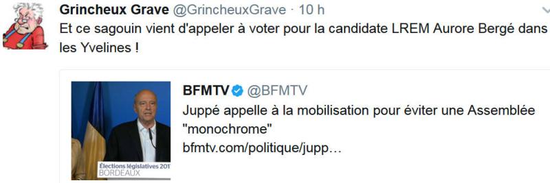 Juppé appelle contre une Assemblée monochrome-11.06.2017