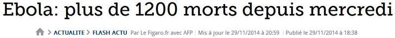 Le Figaro - plus de 1 200 morts depuis mercredi-29.11.2014