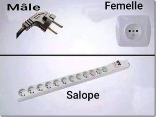 Electricité mâle femelle