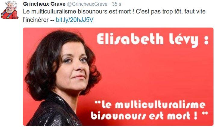 TWEET-multiculturalisme bisounours Elizabeth LevyJPG