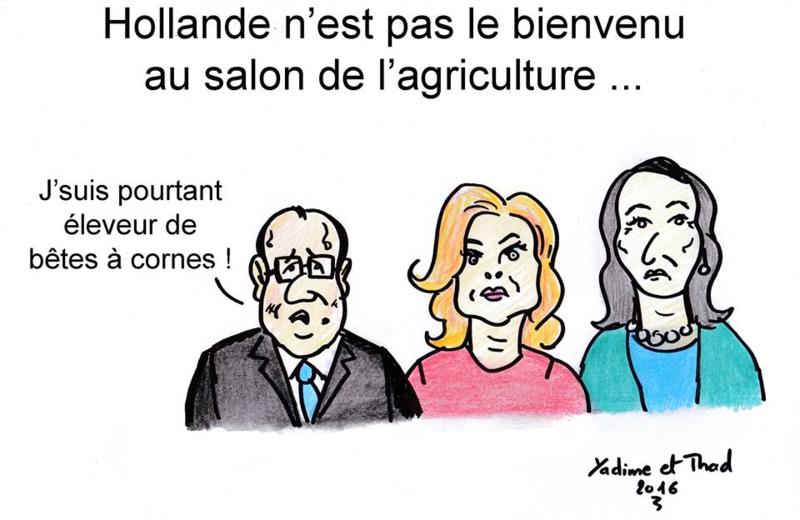 Hollande éleveur de bêtes à cornes