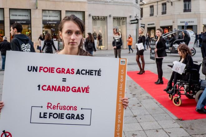 Anti-foie gras
