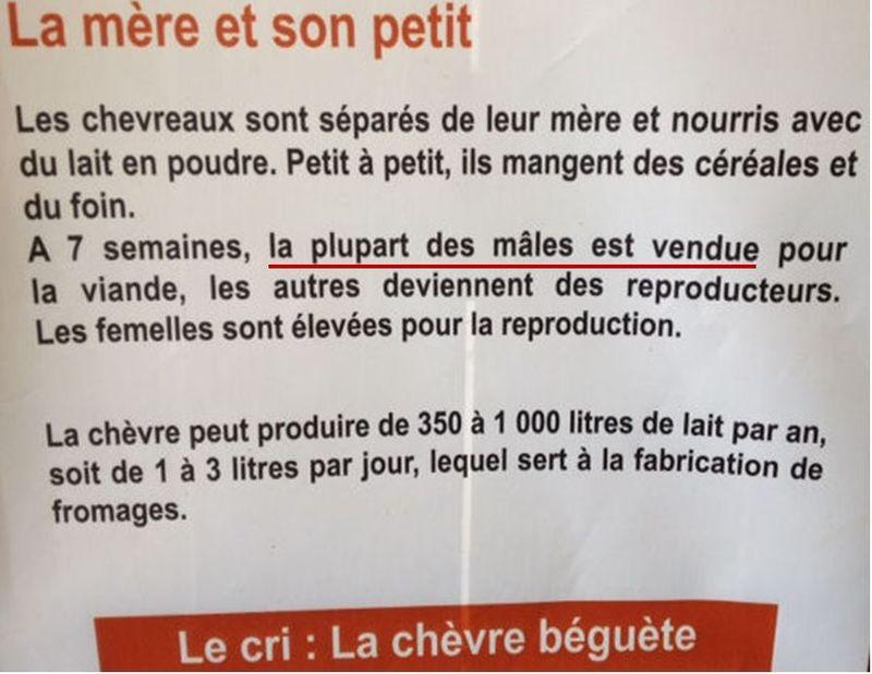 Rambouillet-Bergerie-La plupart