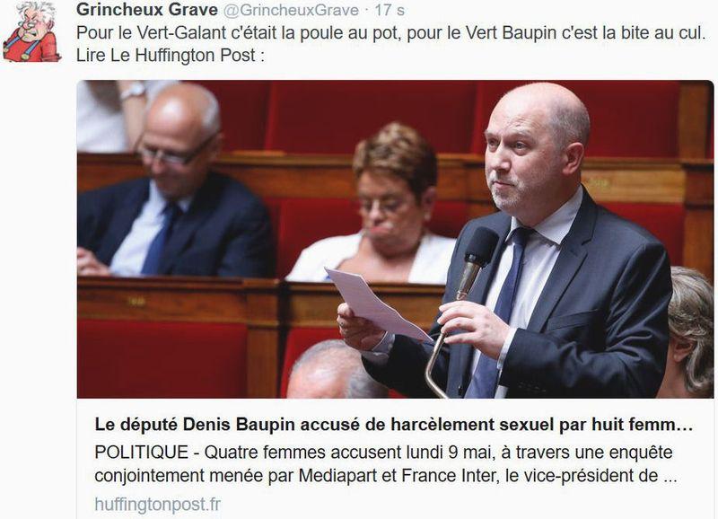 TWEET GG-Vert Galant - Denis Baupin-01.06.2016