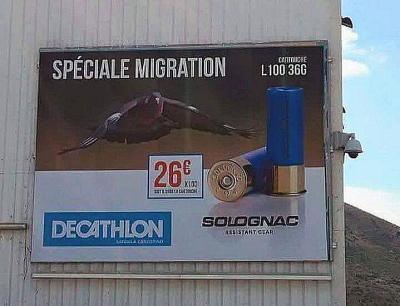Décathlon Spécial Migration-oct 2016