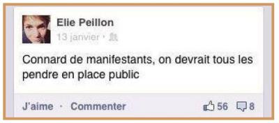 Elie Peillon-Facebook mars 2013