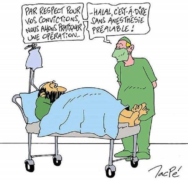 Opération chirurgicale Halal