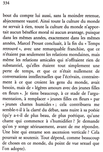 Houellebecq-page 334-2
