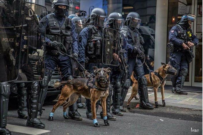 Les milices prêtes à bondir - Coluche