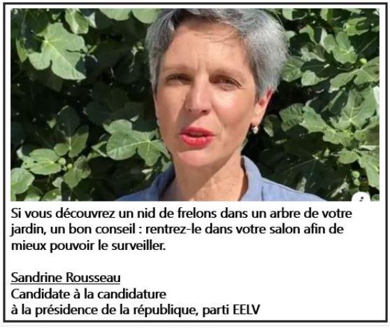 Sandrine Rousseau - Nid de frelons