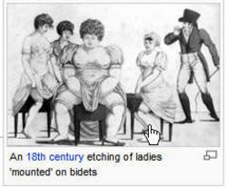 Ladiesonbidet